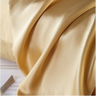 25momme Mulberry Silk Pillowcase with Zipper